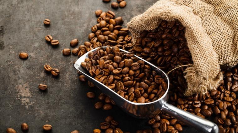 Café, desde la semilla hasta tu taza